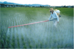 WHO Confirm Glyphosate Cancer Risk