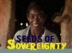 New Film – African Communities take Seed Diversity Back into their Own Hands