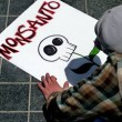 "Guatemala: Mobilising against ""Monsanto Bill"" passed secretly by congress"